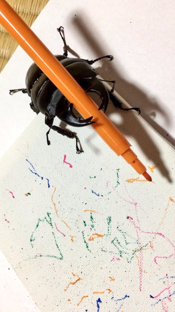 Stag beetle art star Twitter Sp - bonniegrrl | ello