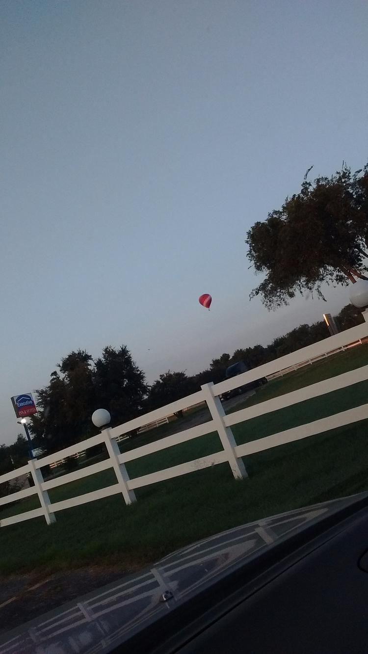 hotairballoon, nature, landscaping - alexandria3 | ello