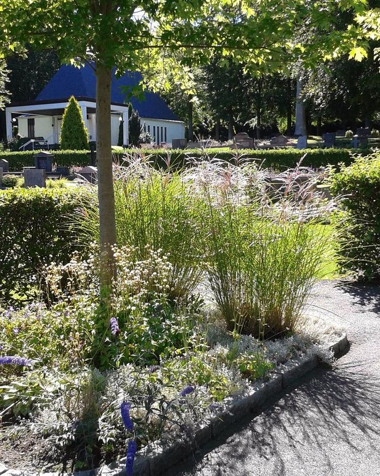 Vacker viloplats grönskan på Sk - skogskyrkogardar   ello