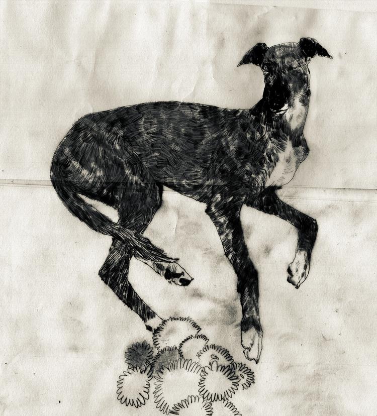 dog, illustration, drawing, art - dogscanbark   ello