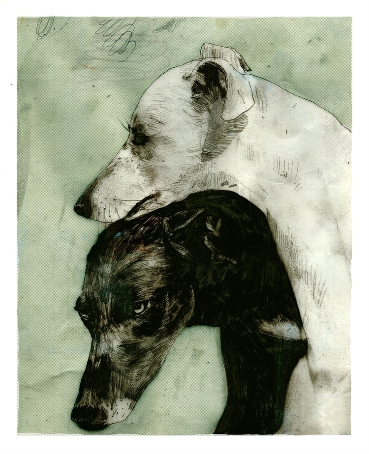 Dogs - dog, illustration, drawing - dogscanbark   ello