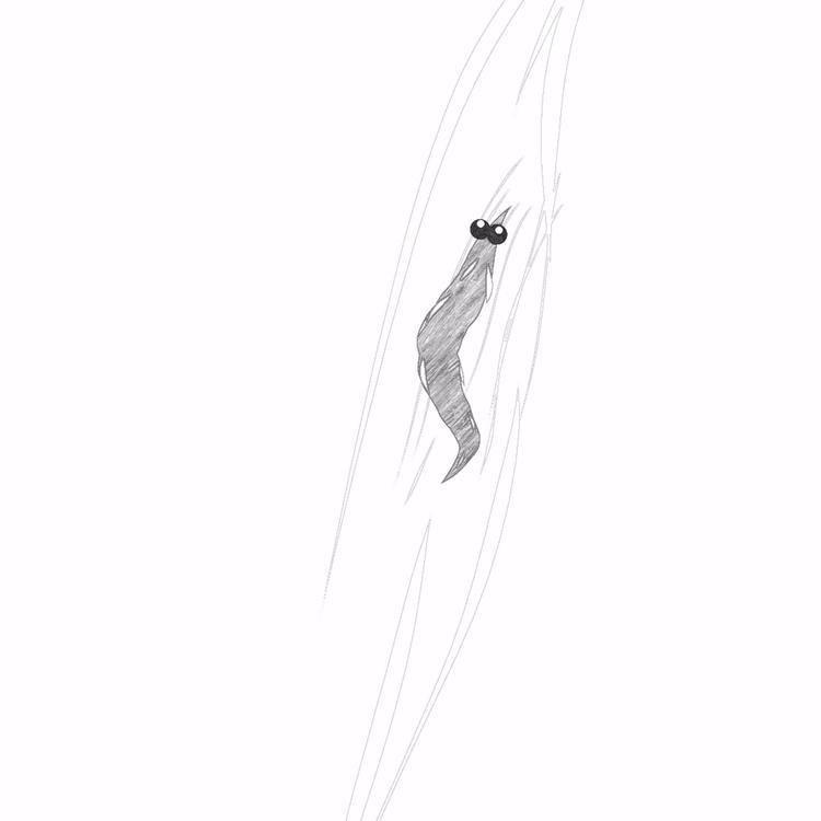 sketch. Josh maggot - leonardo7 | ello