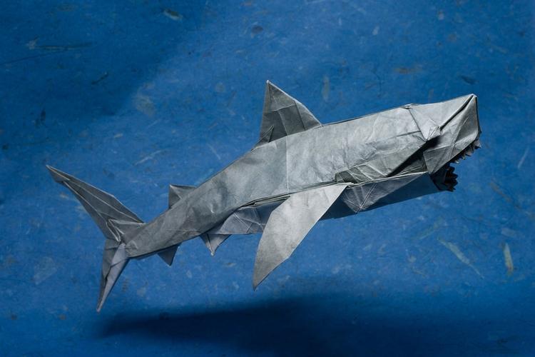 Magnificent Origami Sharks Cele - origamidotme | ello