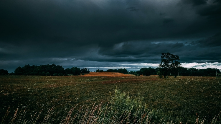 field, horizon, sky, nature, lithuania - beheroght | ello