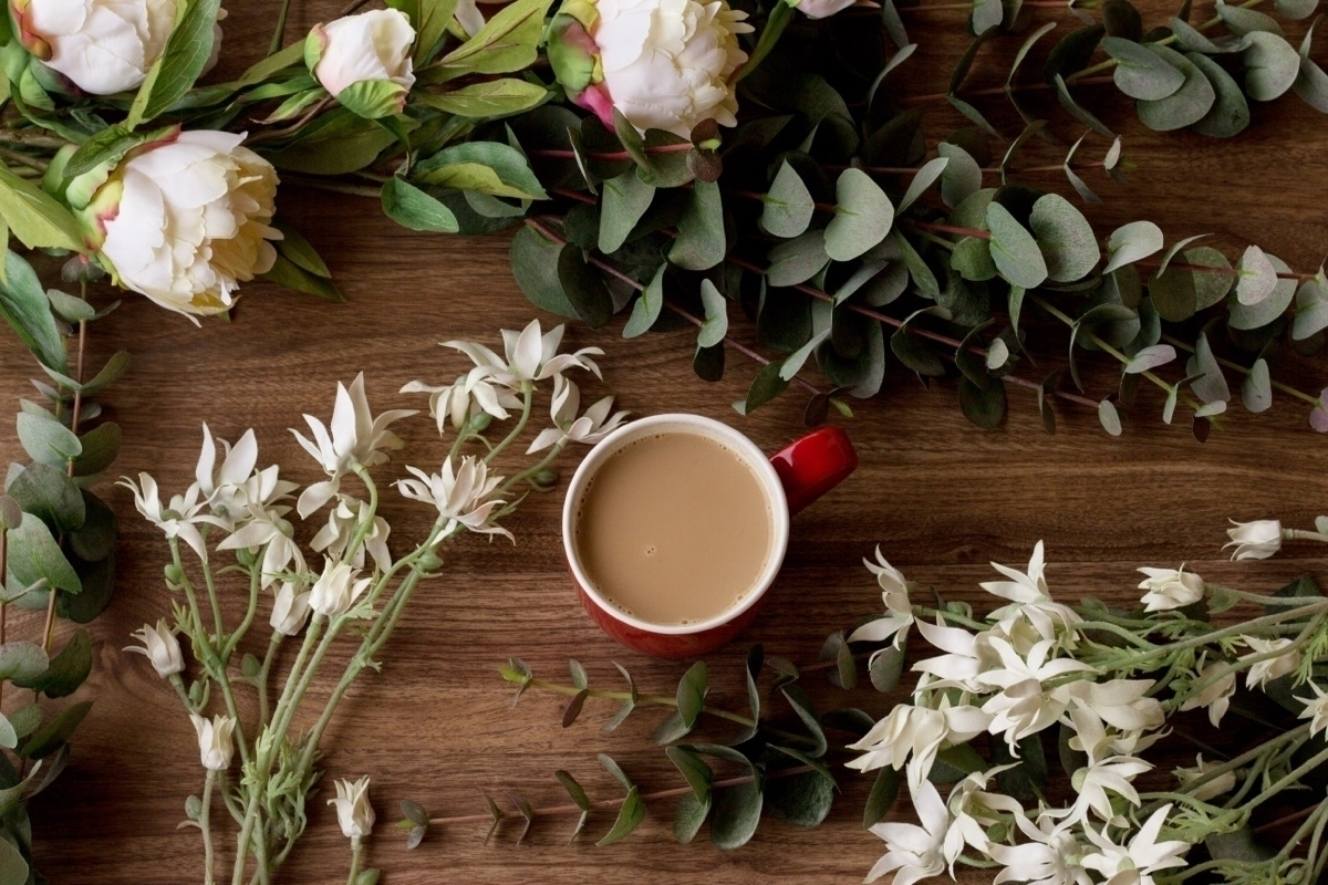 Early morning coffee flowers - floral_perfection - pretty_little_pickings | ello