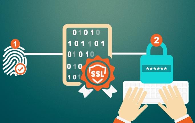 Certificate – Protocol Security - gpdhosting | ello