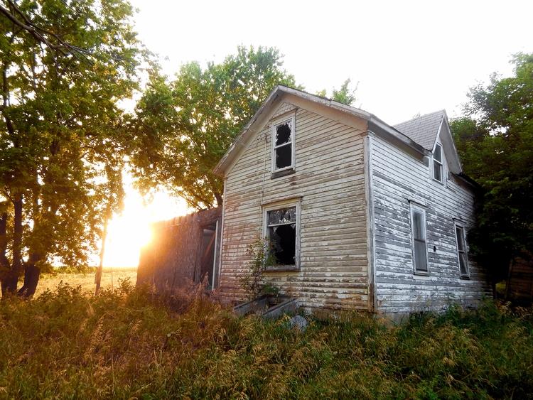 Iowa, noticed bull - rurex, abandoned - trentonleetiemeyer | ello