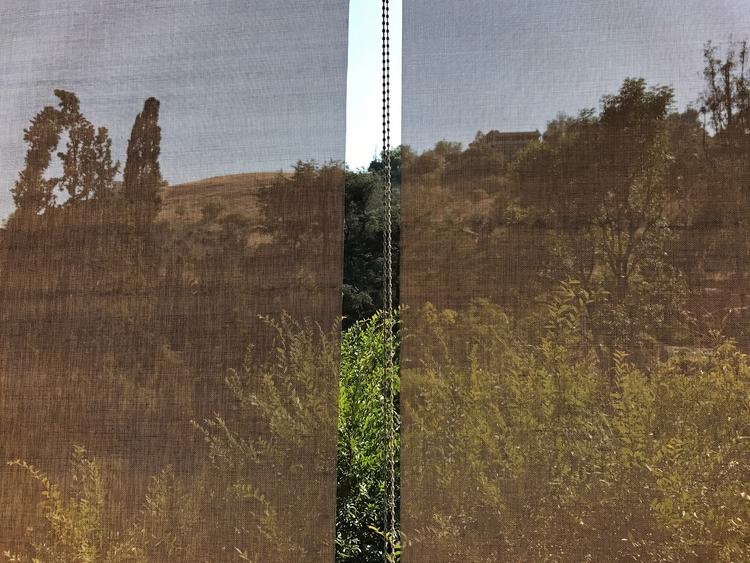 Hillside, Mt Washington Douglas - odouglas   ello
