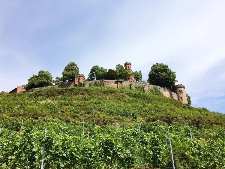 ⇢ Ortenberg - Castle - rowiro | ello