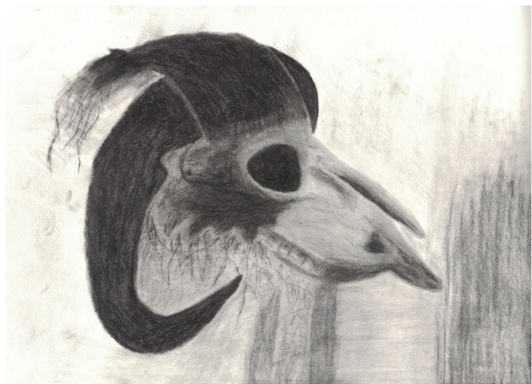attempt drawing Skull Goat. pho - whiteoleander | ello