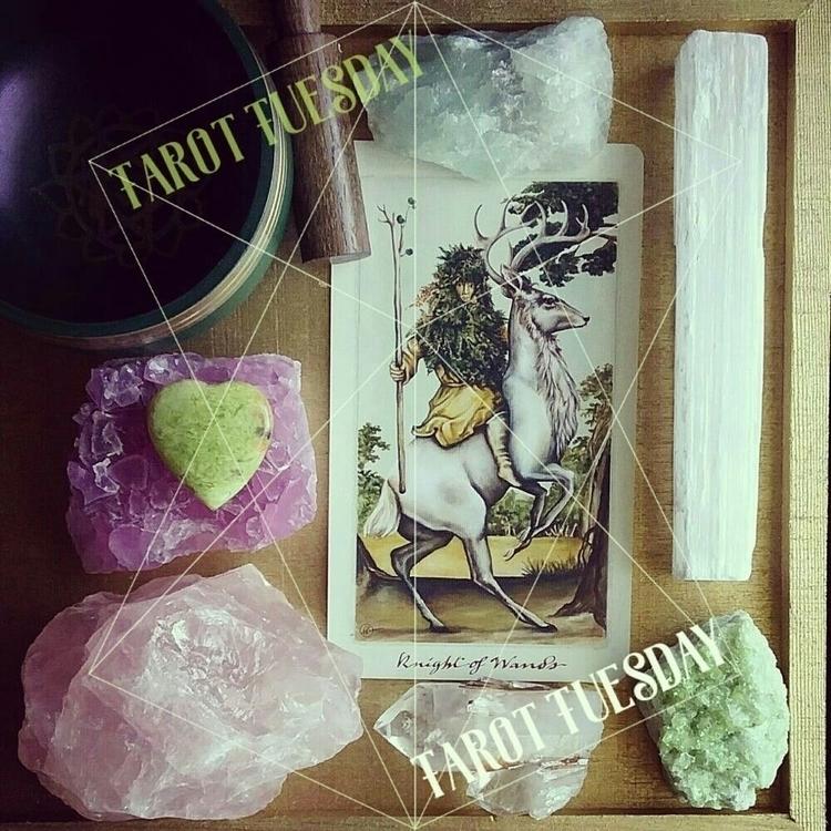 Tarot Tuesday - Knight Wands |♢ - sacredservicereiki | ello