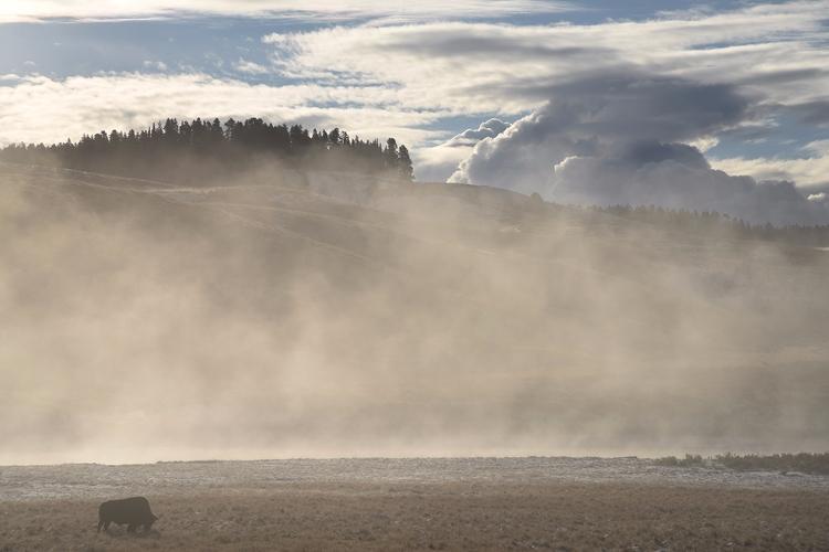 Yellowstone, bucket list - ericklammphotography   ello