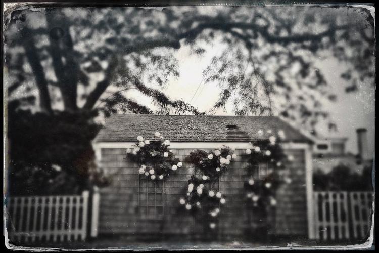 suburban - suburbia, newjersey, neighborhood - dkellyphotography | ello