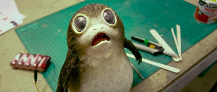 Meet porgs -- cuddly creatures  - bonniegrrl   ello