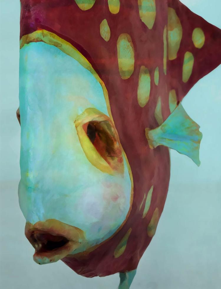 Detail Milli sculpted fish Fin  - ocasiocasa   ello