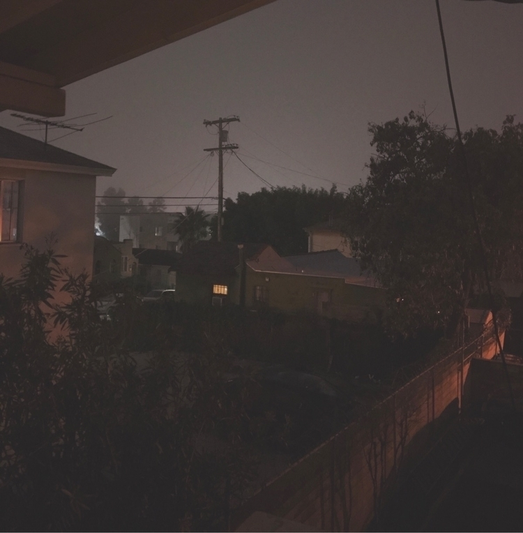 Backyard - photography, fog, grim - andyzus | ello