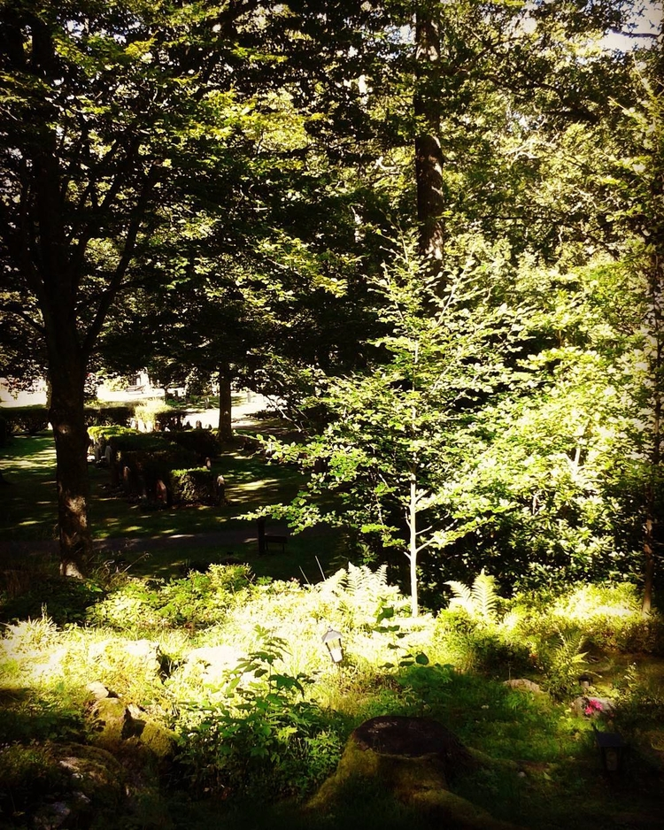 Lykta, stubbe, mossa ock gravvå - skogskyrkogardar | ello