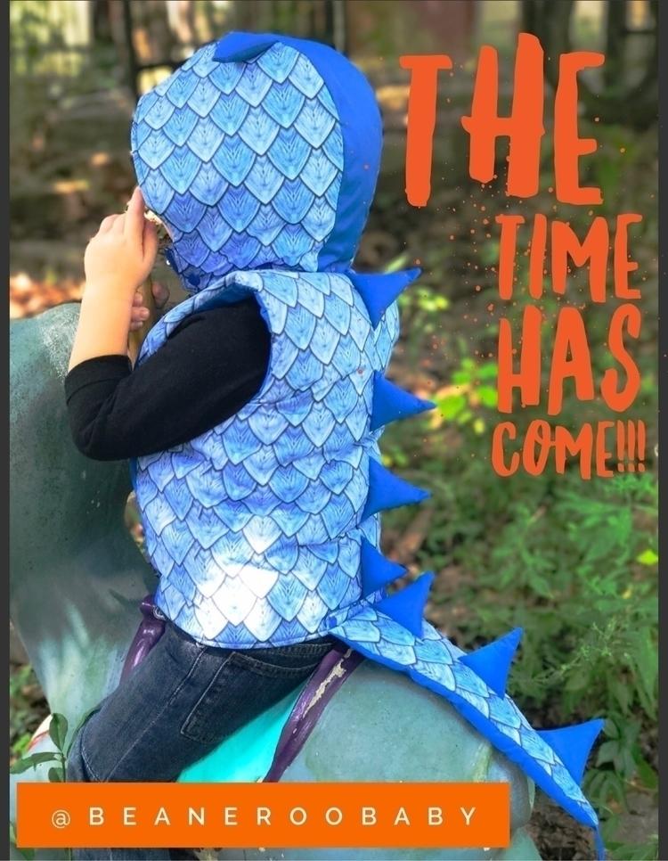Dragons Vests open preorder!!  - beaneroobaby | ello