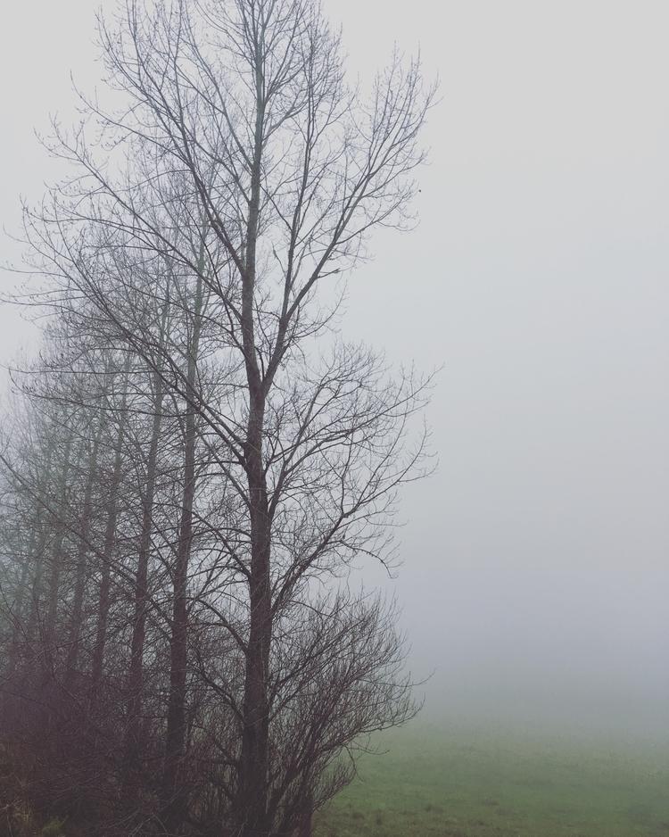 Hazy daze - lucidreaming | ello