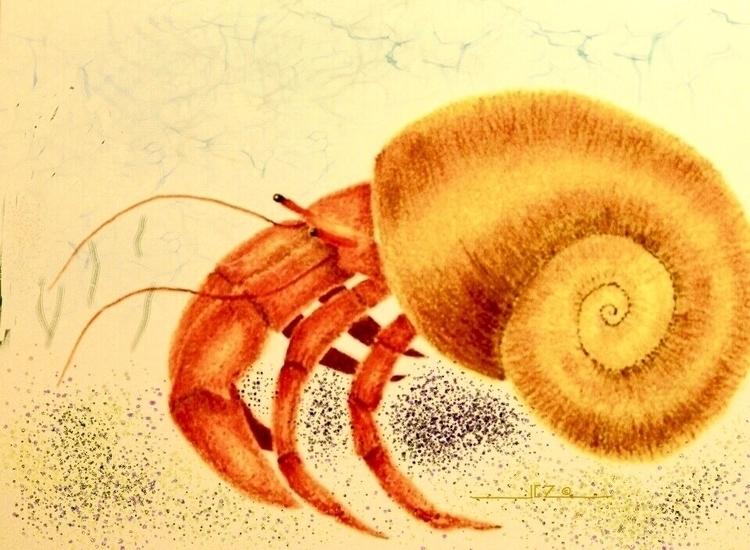 Hermit Crab (2013) archives - hermitcrab - leapingbluehare | ello