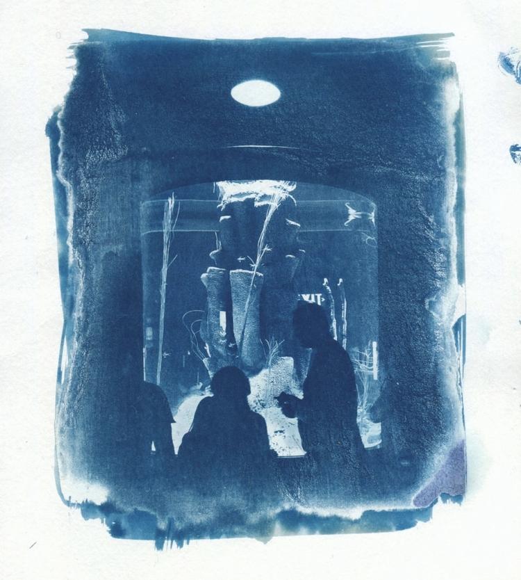 Cyanotype aquarium - art, cyanotype - megankoth | ello