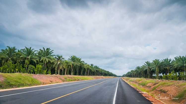 Oil Fields | [Ello](http://ello - photografia | ello