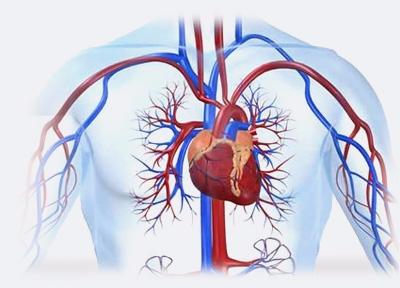 Cardiologist anna Nagar - poojagera125 | ello