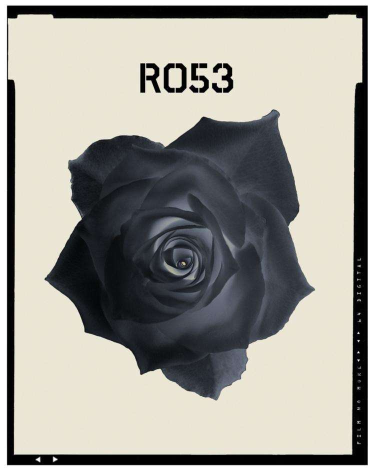 Dark Rose 53 - photography, graphicdesign - ralfralf | ello