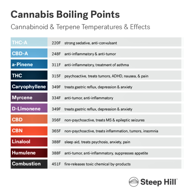 cannabis, ellocannabis, terpenes - ellocannabis | ello