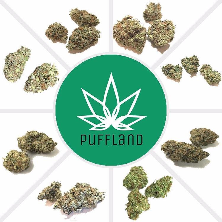 Puffland offers variety marijua - pufflandcanada   ello