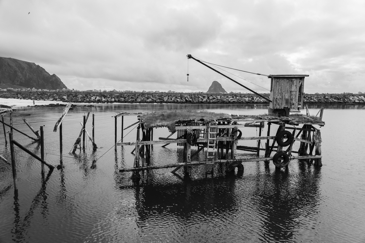 crane - photography, landscape, outdoor - anttitassberg | ello