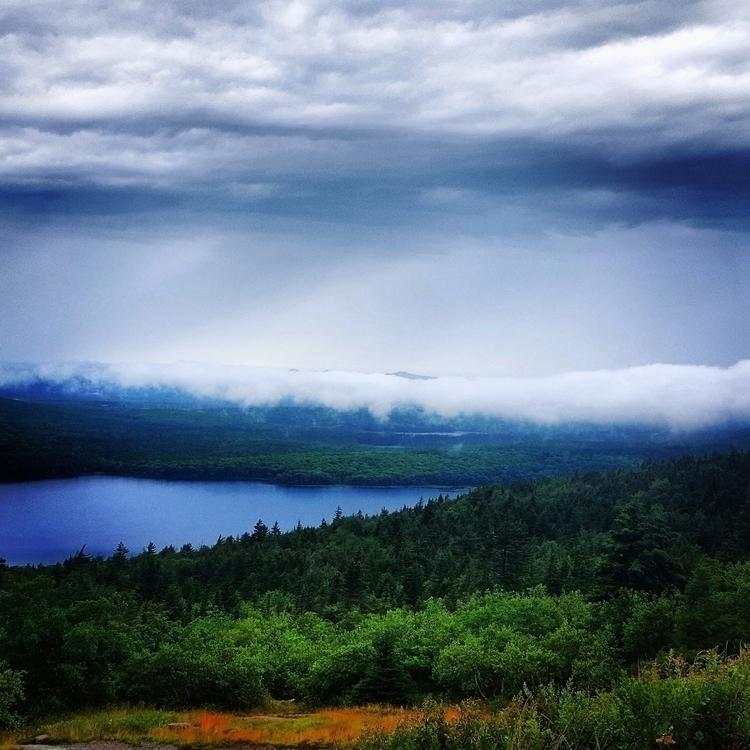 Mountain wishes good misty, mag - grayvervain | ello