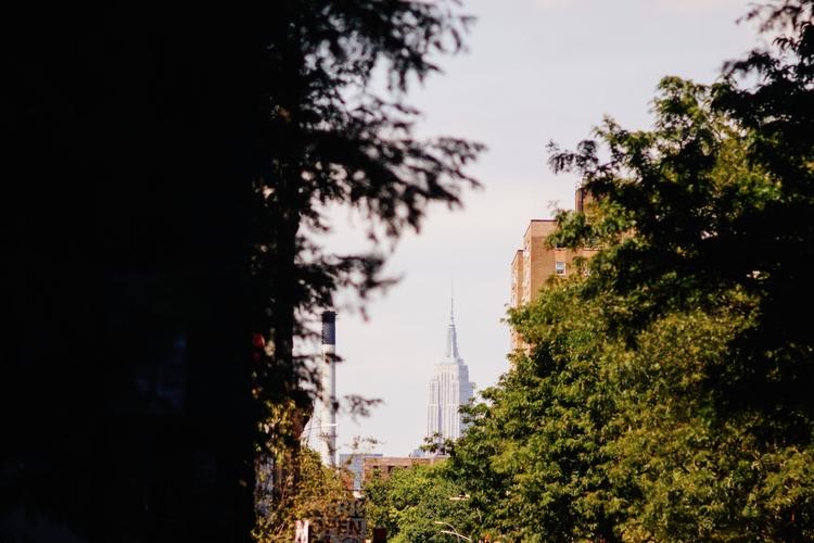 watching... 2017 Brooklyn Summe - inatural | ello
