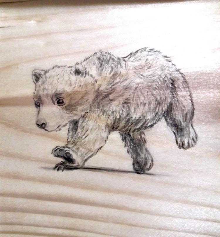 Doodling wood sheets. hard spli - j0eyg1rl | ello