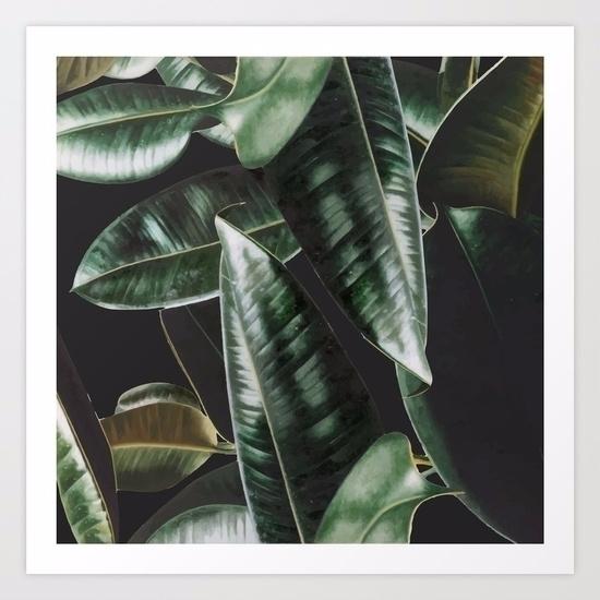 Tropical Plants / Digital Art P - lostanaw   ello