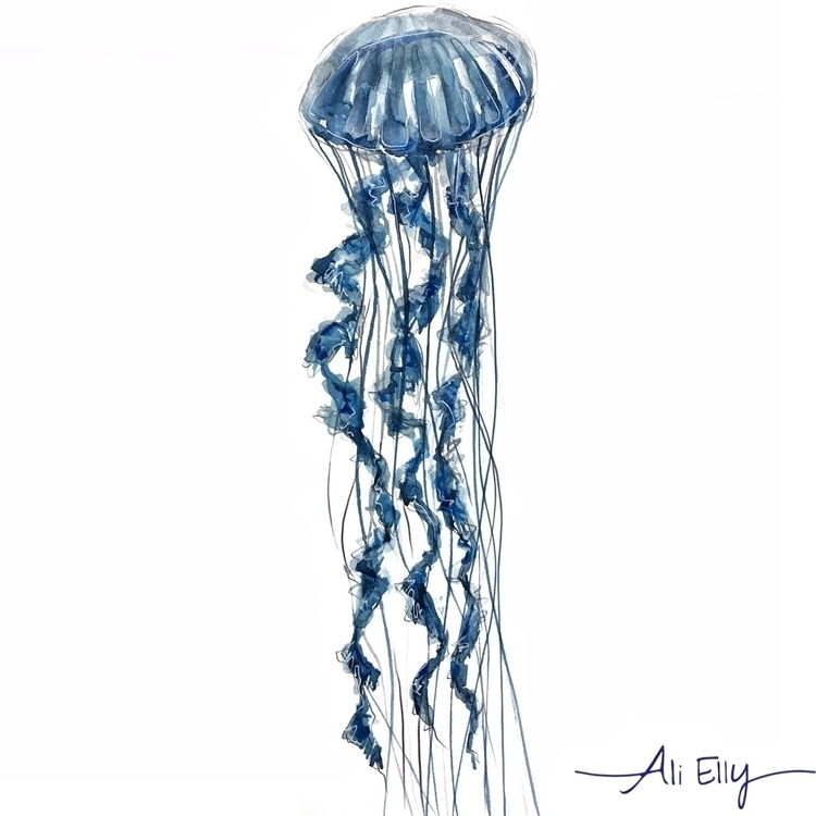 jellyfish, nautical, Ello, design - aliellydesign | ello