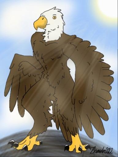 Chayton Hawkins, Bald Eagle str - brandon_omega-x | ello