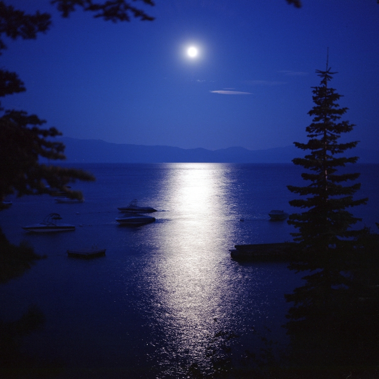 Goodnight Kodak Ektar 100 Mamiy - biosfear | ello