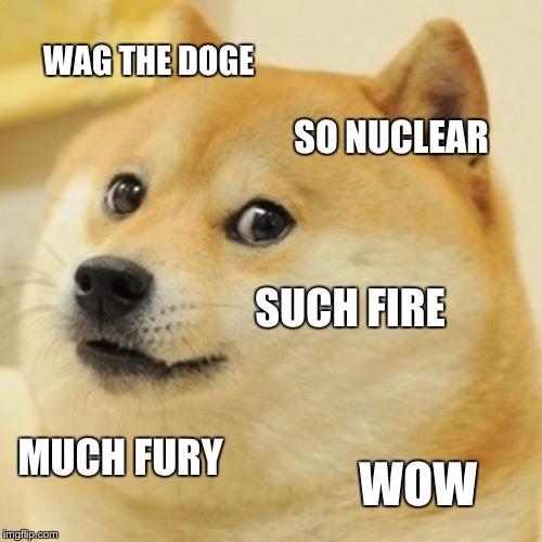 memed today - wagthedog, doge, memes - wavewhore | ello