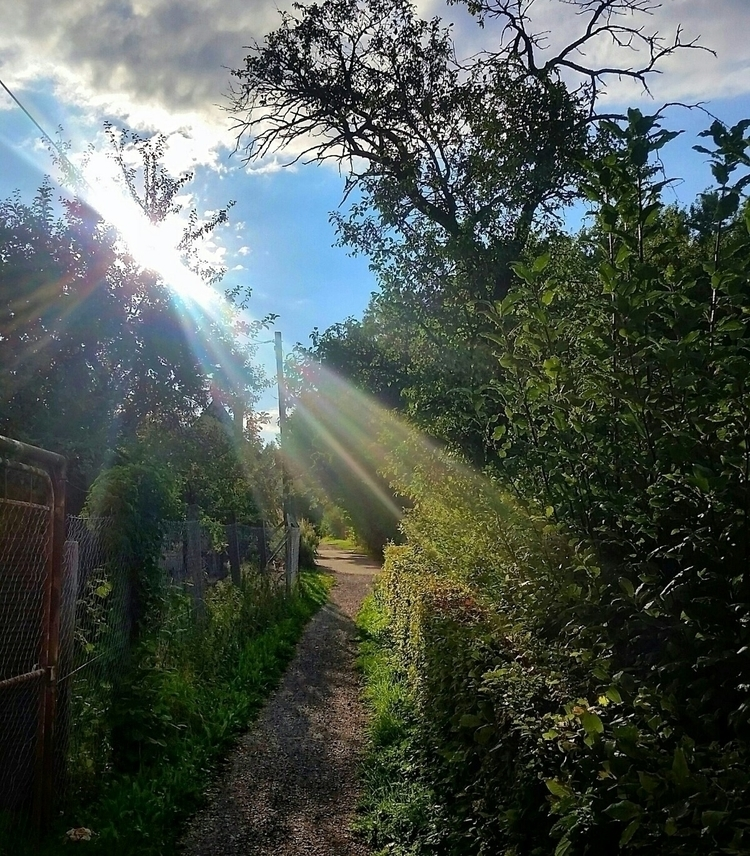 rays, sunlight, village, photography - aleksaleksa | ello