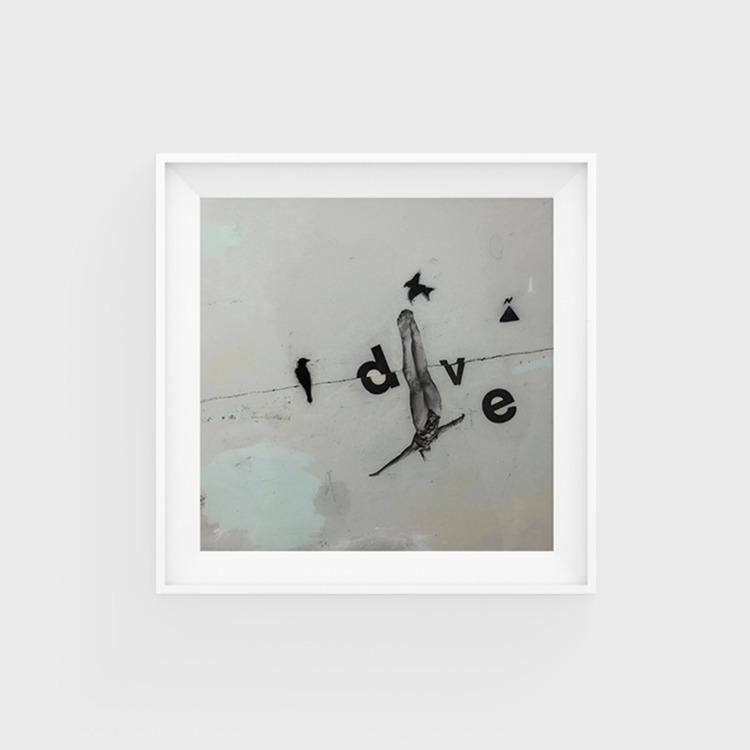 dive. limited edition print. 25 - ginobelassen | ello