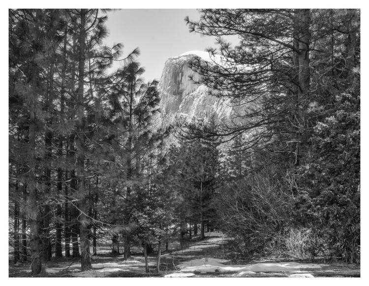 Yosemite National Park, CA - guillermoalvarez | ello