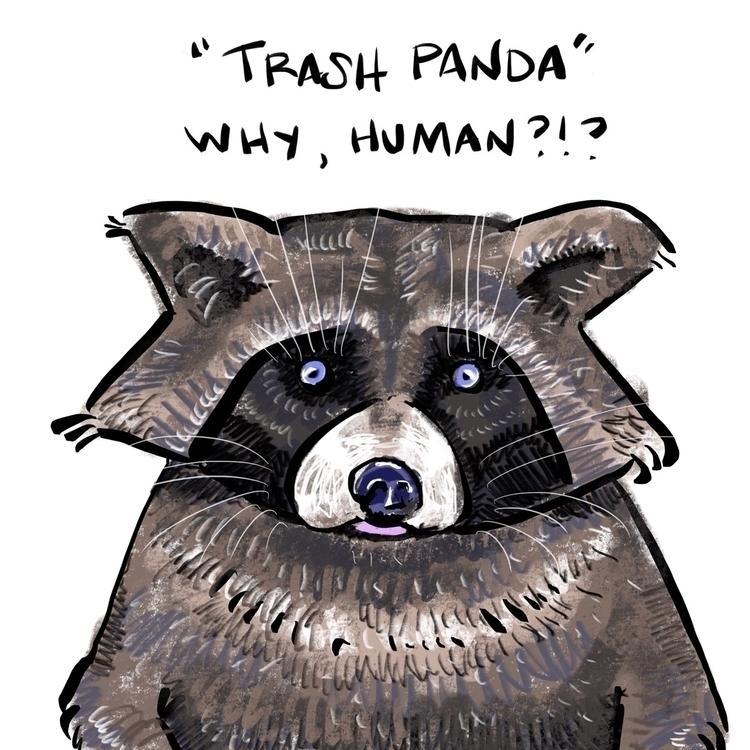 illustration, raccoon - reneeleigh   ello