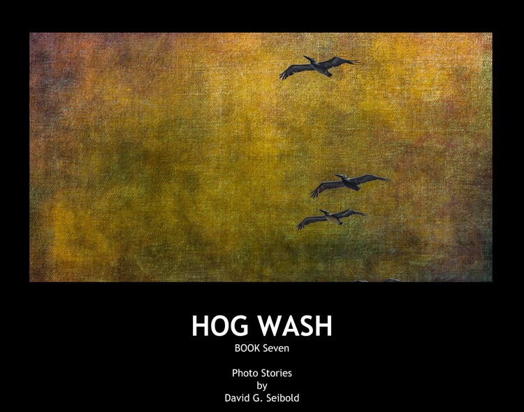 Hog Wash Book David Seibold Blu - davidseibold | ello