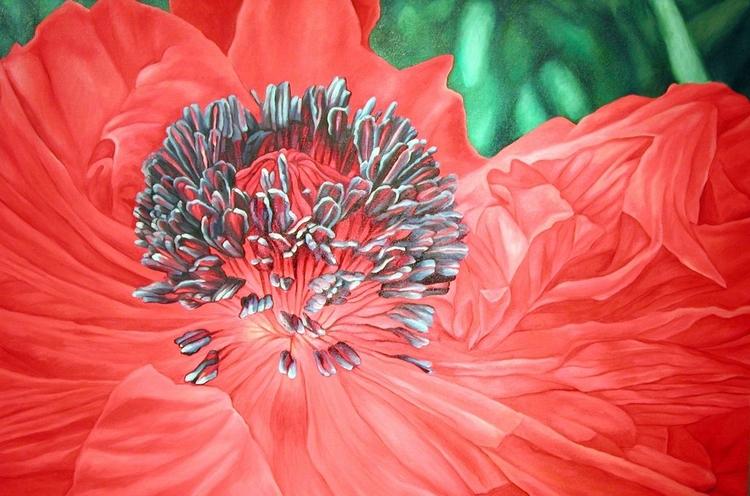 Poppy, oil canvas, 32 X48 1998 - nancyht | ello