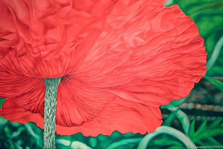 Poppy, oil canvas, 1998 32X48 - nancyht | ello