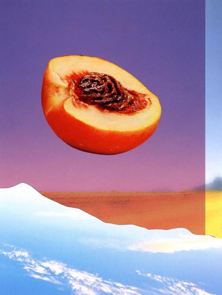 Peach Betty Klaasse - creativedebuts - creativedebuts | ello