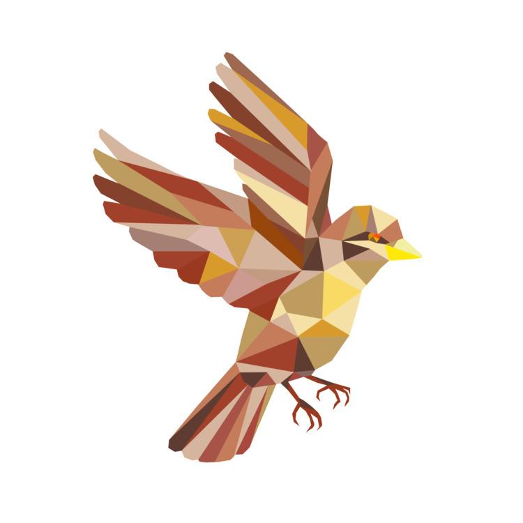 Sparrow, Flying, Polygon, retro - patrimonio | ello