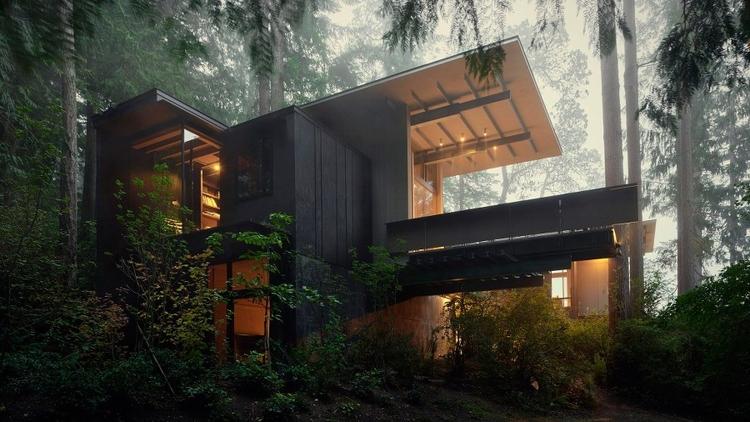 Jim Tiny Cabin Woods Part Natur - pionic | ello