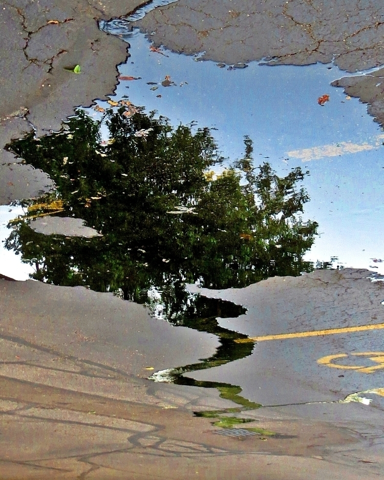 drain - photography - kenlong | ello